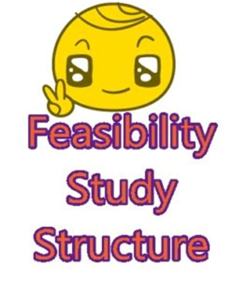 FEASIBILITY STUDY FOR A PATIENT by Timothy Kane McFarlan